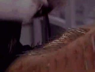 Record Guiness: Mil piercings en 1 día.