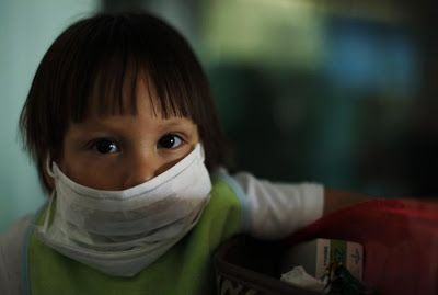 Gripe Porcina 7