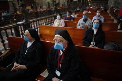 Gripe Porcina 12