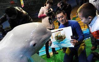 delfin-pintor2