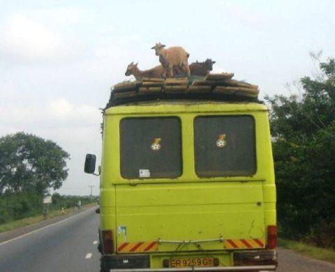 fotografias curiosas de africa 18