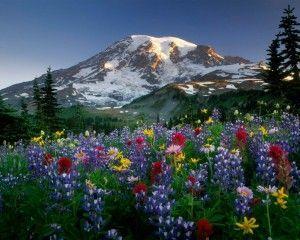 10 Fotos de Paisajes Naturales en HD