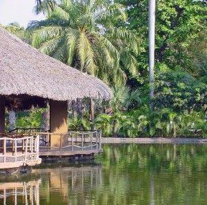 acapulco el Parque del Papagayo
