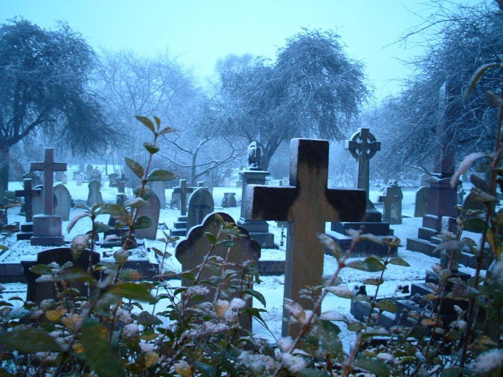 Una Anciana es Declarada Muerta por Error