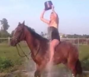 El Accidentado Reto del Ice Bucket Challenge sobre un Caballo