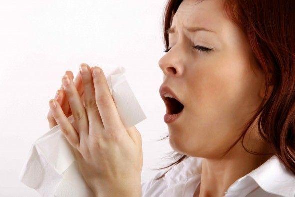 Las alergias estaciones se dan sobre todo en primavera y verano