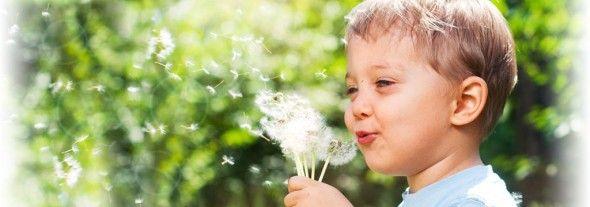El polen es una de las cosas que más alergias causa