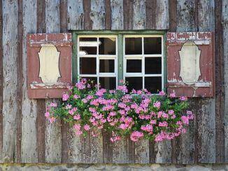 Cómo Refrescar tu Casa sin Usar Aire Acondicionado